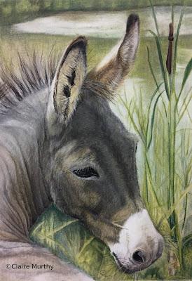 Donkey Pet Portrait Painting : Pastel
