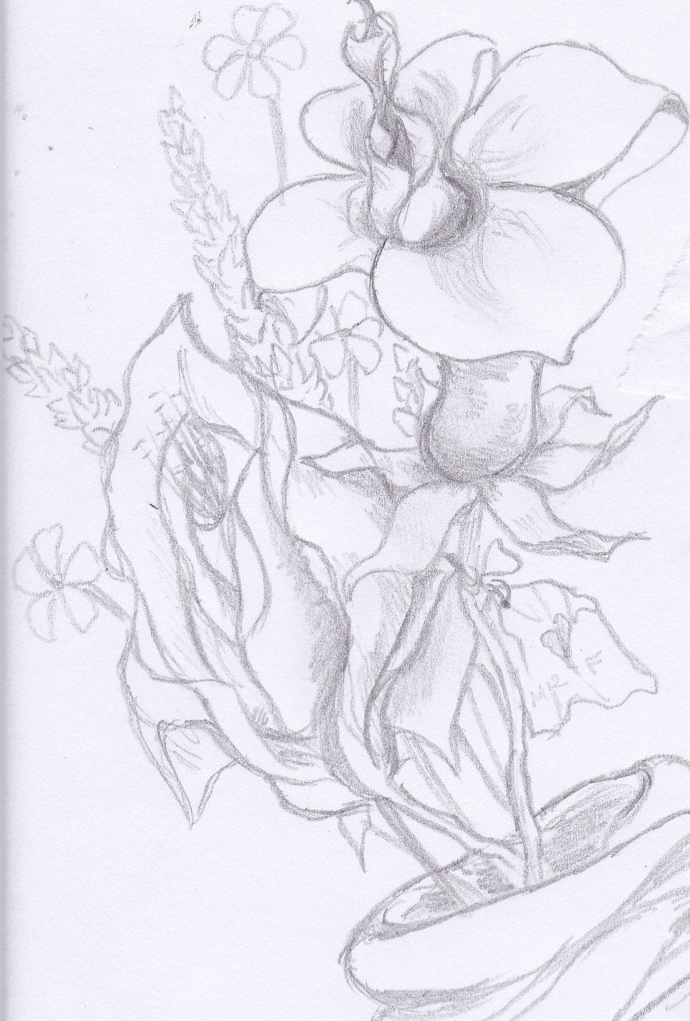 Sketsa Bunga Lukisan Pasu Bunga Jatuh