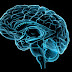 Brain Activity Patterns After Trauma May Predict Long-Term Mental Health, Likelihood of Stress Disorders