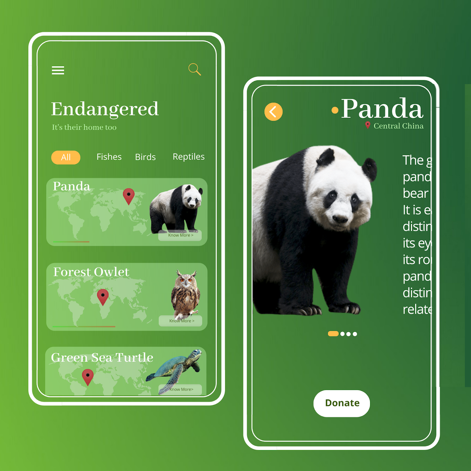 UI for Animal NGO