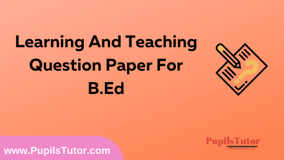 Learning And Teaching Question Paper For B.Ed 1st And 2nd Year And All The 4 Semesters In English, Hindi And Marathi Medium Free Download PDF   Learning And Teaching Question Paper In English   Learning And Teaching Question Paper In Hindi   Learning And Teaching Question Paper In Marathi