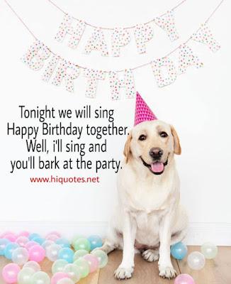 Dog birthday Instagram captions