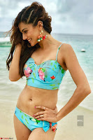 Bollywood Bikini ACTRESS in Bikini  Exclusive Galleries 025.jpg