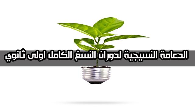 الدعامة النسيجية لدوران النسغ الكامل للسنة اولى ثانوي استاذ زاوي عبد الرحمان