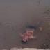 Embriagado, homem é encontrado cochilando dentro de rio