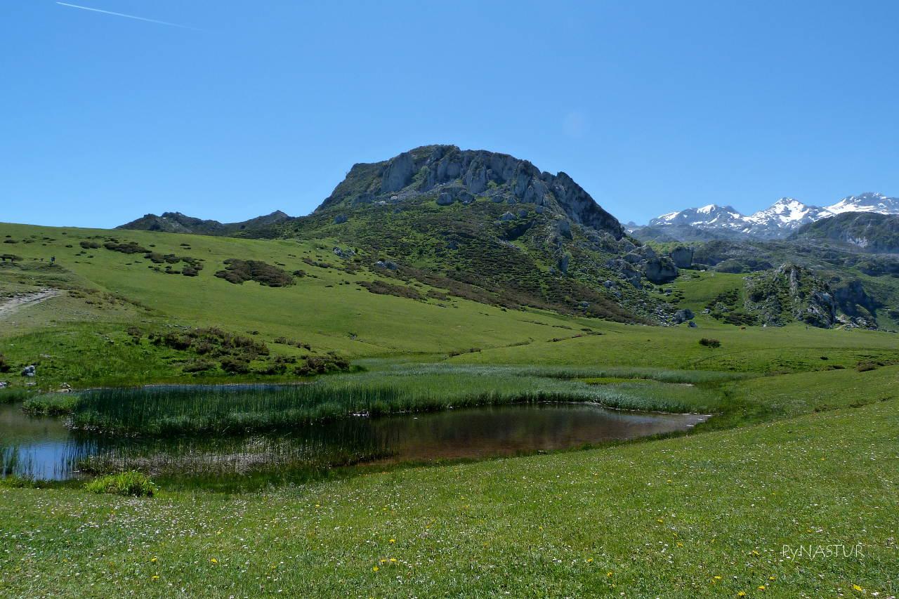 Laguna junto al Lago Ercina - Lagos de Covadonga - Asturias