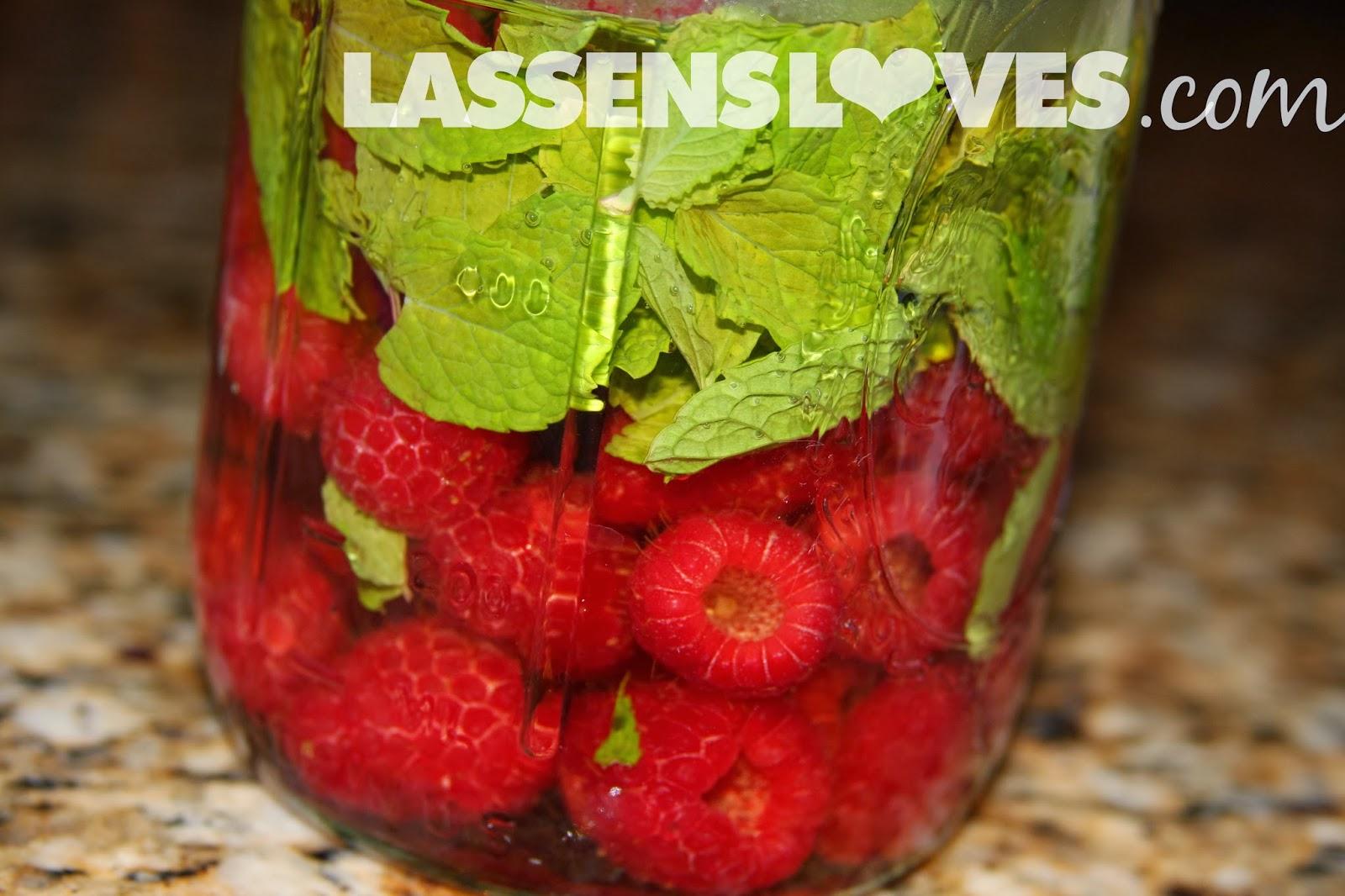 lassensloves.com, Lassen's, Lassens, Flavored+Vinegars