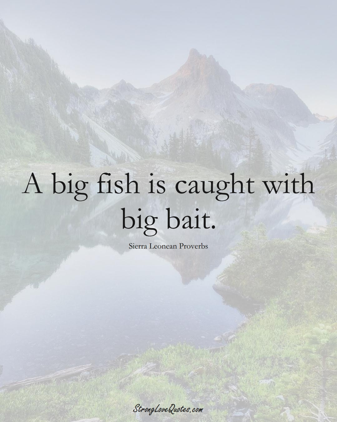 A big fish is caught with big bait. (Sierra Leonean Sayings);  #AfricanSayings