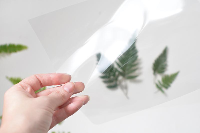 Diy Botanical Picture Frames Burkatron
