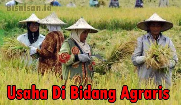 contoh usaha di bidang agraris