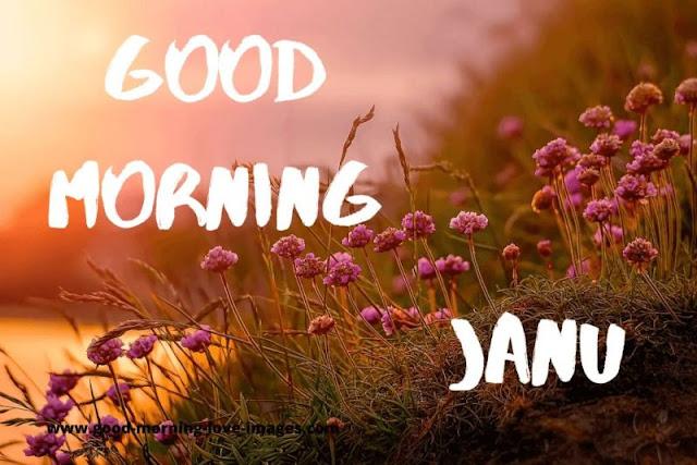 good morning janu