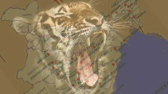 Find Latest Tiger Reserves in India map 2020