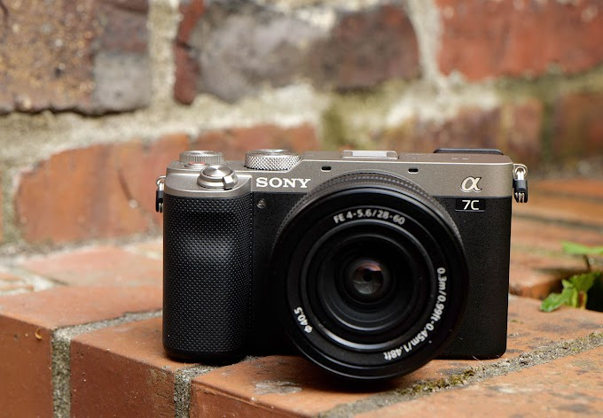 Sony A7C Sample footage download and Raw file