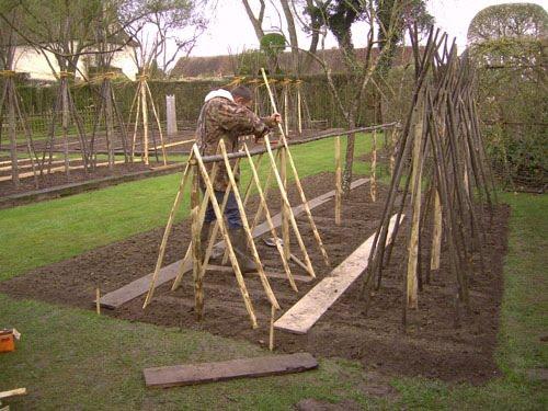 le blog du jardinier du prieur d 39 orsan le parc tomates. Black Bedroom Furniture Sets. Home Design Ideas