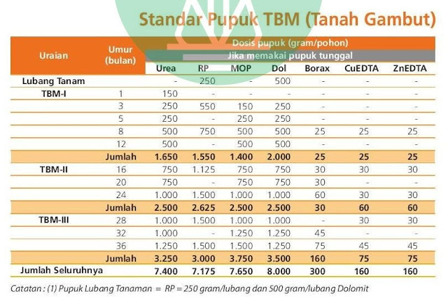 Urutan Pemupukan Kelapa Sawit TBM Tanah Gambut