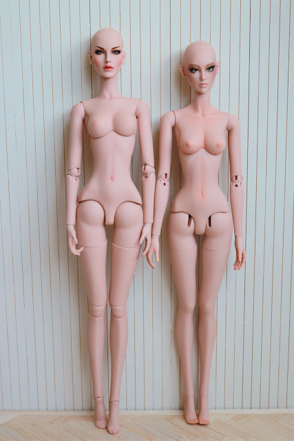 Modsdoll and Ficondoll body comparison