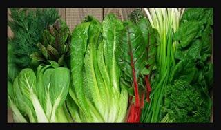 sayuran-hijau-makanan-untuk-program-hamil
