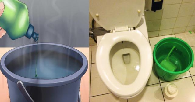 Trik Mudah Mengatasi Toilet Mampet, Tak Perlu Panggil Tukang Sedot WC