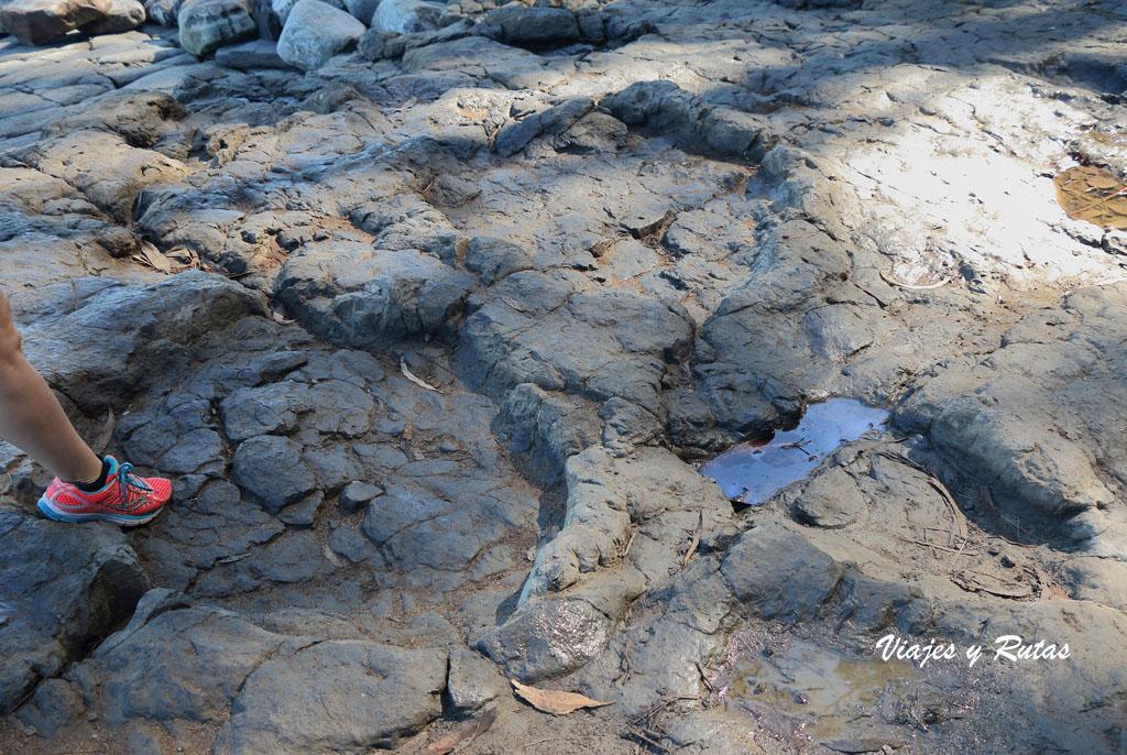 Icnitas en la Playa de la Griega