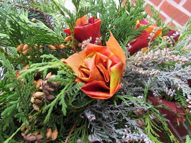 maple leaf roses