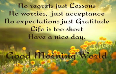 Good Morning Quotes For Best Friend: no regrets just lessons no worries,