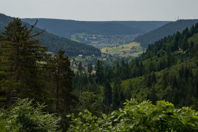 Premiumwanderweg Murgleiter | Etappe 4 von Schönmünzach nach Baiersbronn | Wandern nördlicher Schwarzwald 15