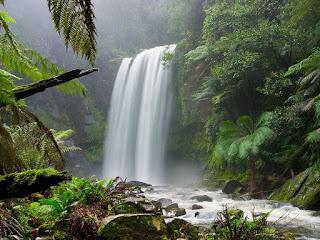 catarata-hopetoun-en-parque-nacional-de-otway-en-autralia