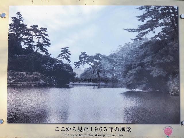 薬師池公園 1965年の薬師池の写真