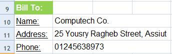 فاتورة مبيعات Excel