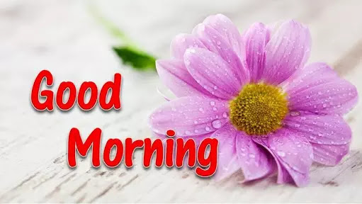 Good Haryanvi Good Morning Status हरयाणवी गुड मॉर्निंग स्टेटस