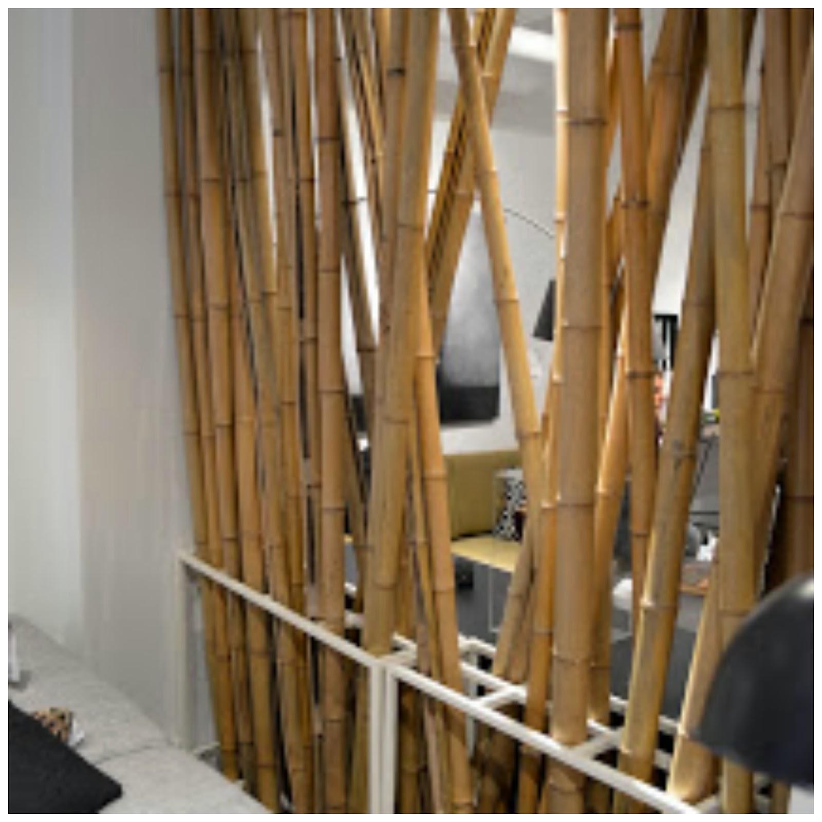 Diy Bamboo Room Divider Shapeyourmindscom