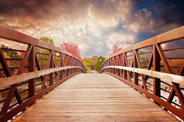 صور وخليات اطول جسر في العالم من الخشب