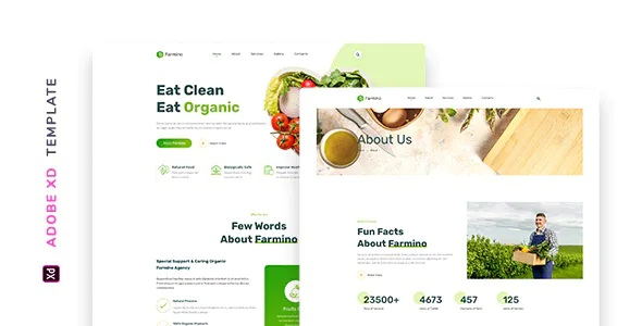 Best Organic Food Template
