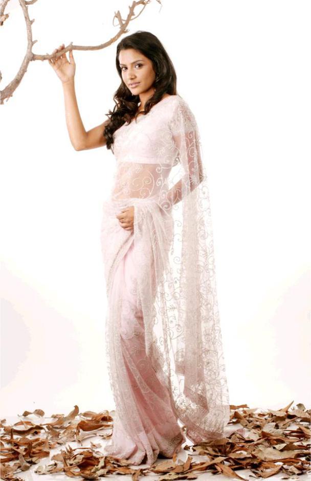 Priya Anand in transparent saree