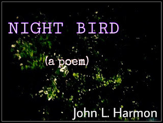 Night bird, a poem by John L. Harmon