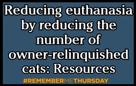 Reducing euthanasia by reducing the number of owner-relinquished cats: Resources to keep cats in their homes