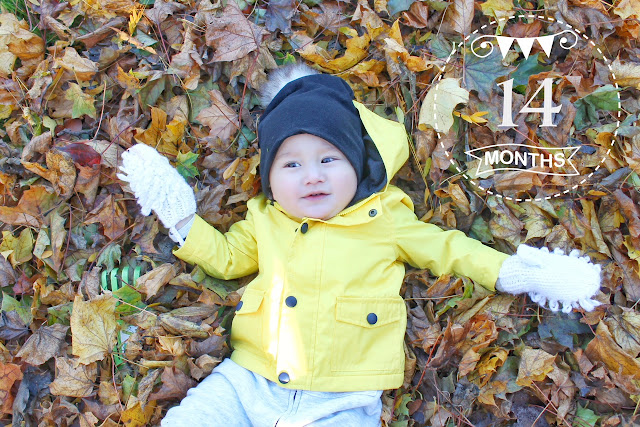 cute baby boy lying in a pile of leaves