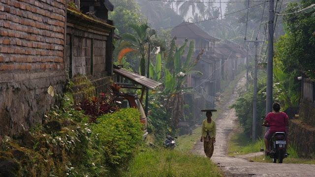 Leading Bali virologist says island should go into lockdown