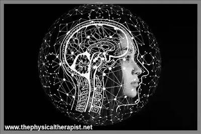 ما هي السكتة الدماغية: إليك خطورتها و لماذا تحدث