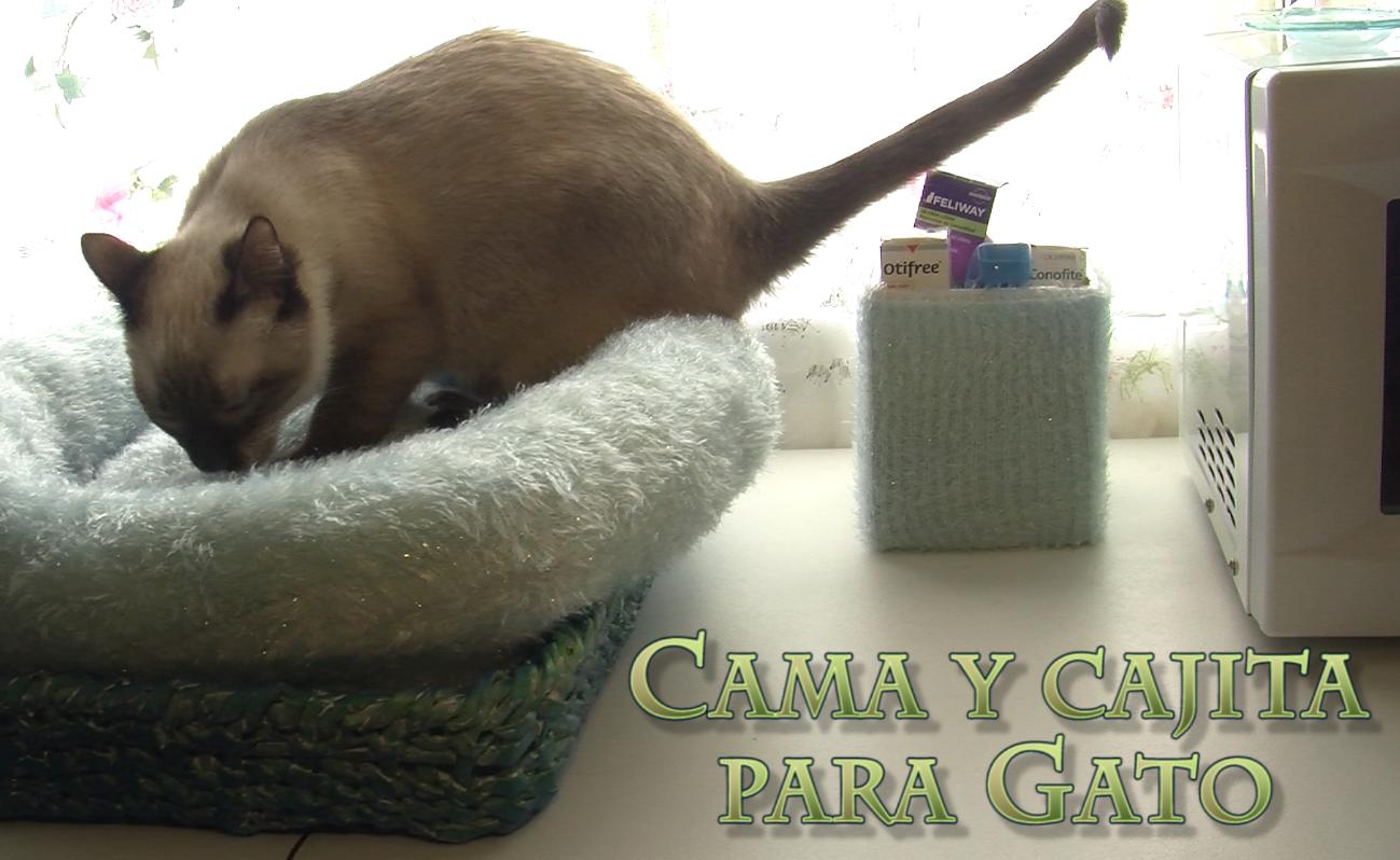 Cama Para Gato Con Cesta De Papel De Periódico Más Cajita A Juego