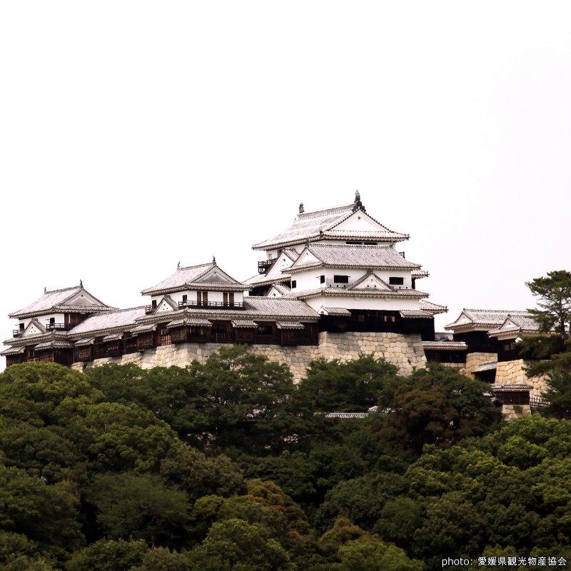 【松山城】搭纜車去看 現存12天守中最高的一座城