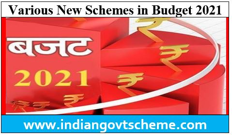 Various New Schemes in Budget 2021