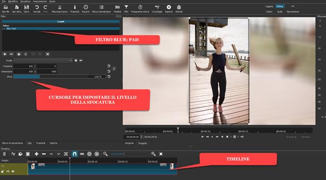 applicazione del filtro blur pad per la sfocatura