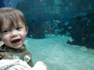 excited by the fish