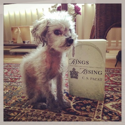 Murchie gives the viewer the side-eye as he sits on a burgundy rug, slightly in front of an upright, pale green trade paperback copy of Kings Rising.