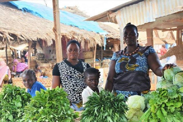 Role of women highlighted in study focused on the benefits of good farmer seed production