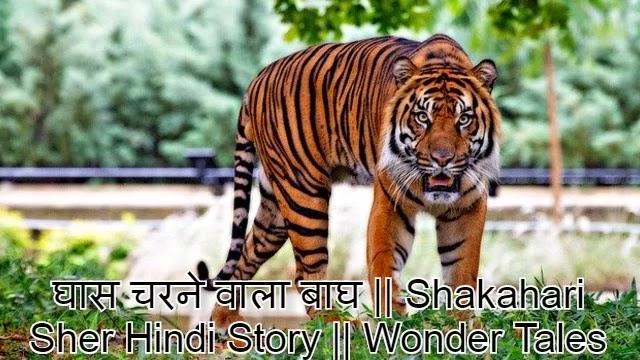 घास चरने वाला बाघ    Shakahari Sher Hindi Story    Wonder Tales Hindi