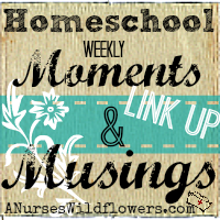 http://anurseswildflowers.com/homeschool-weekly-moments-and-musings-guidelines/