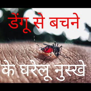 dengue mosquito gharelu nuskhe