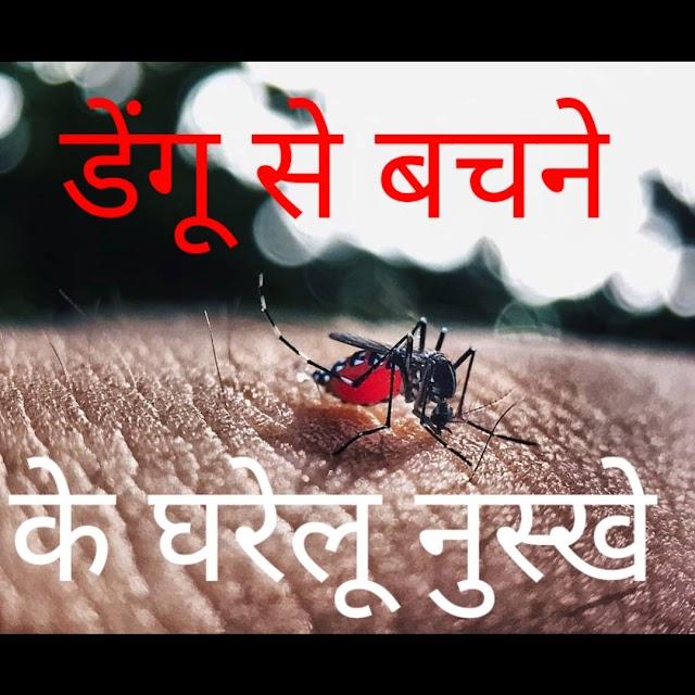 डेंगू से बचने के घरेलु नुस्खे, Dengue mosquito